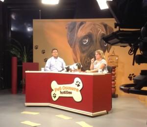 Cindi on TV 3, Feb 2014